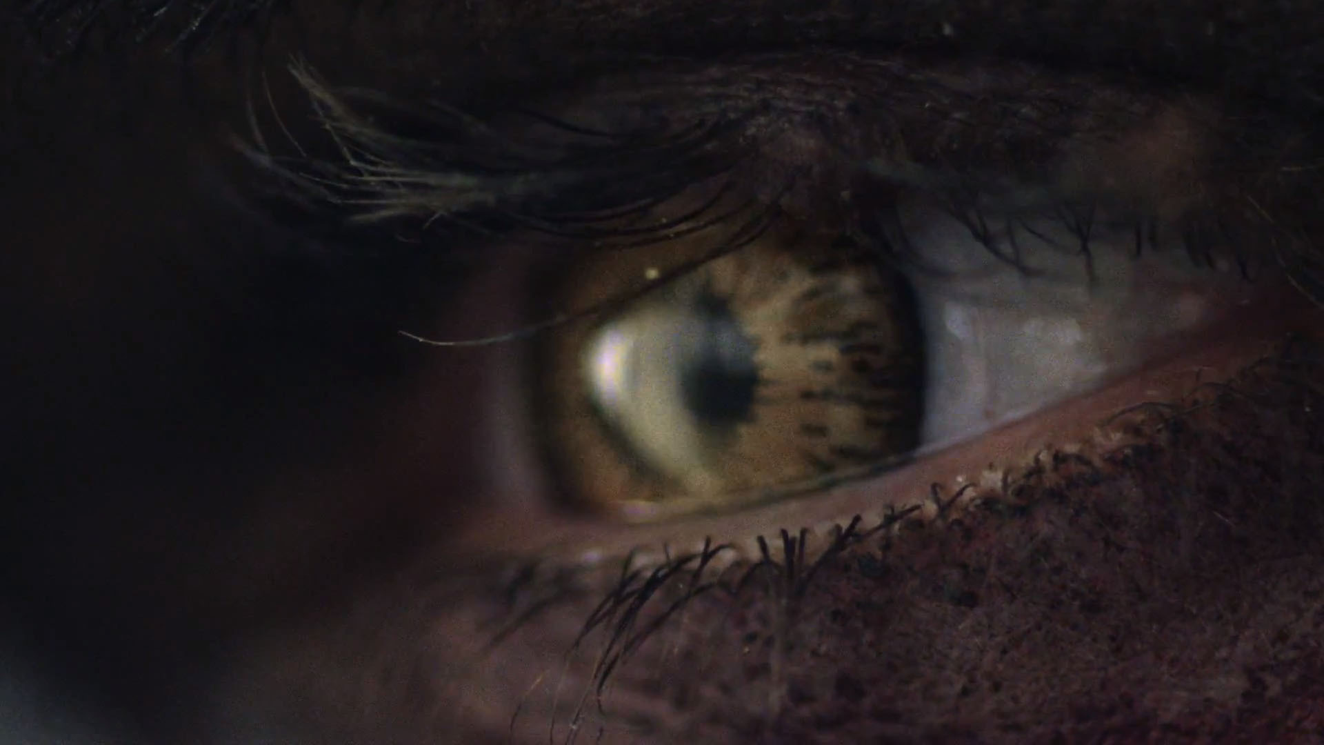 """Sony releases teaser for """"Game Day 2013"""""""