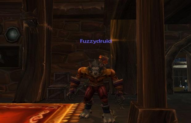 FuzzyDruid